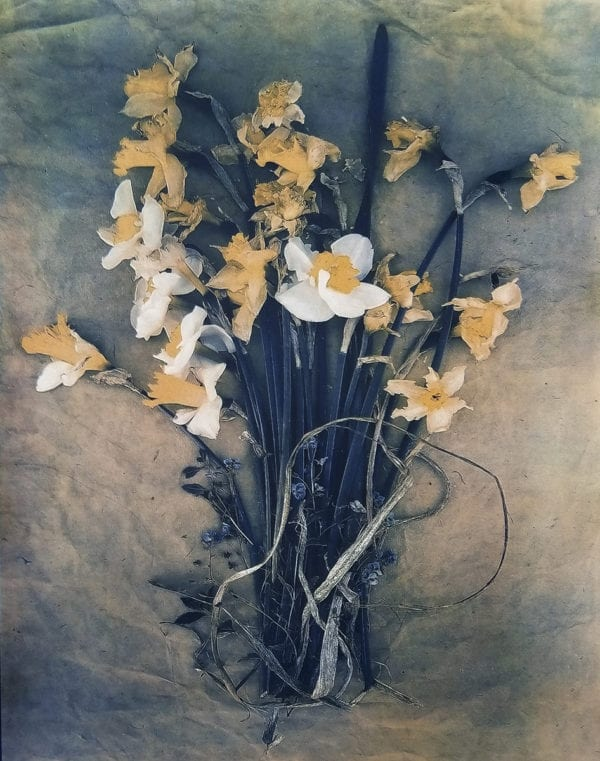 Daffodils and Forget Me Nots, Diana Bloomfield